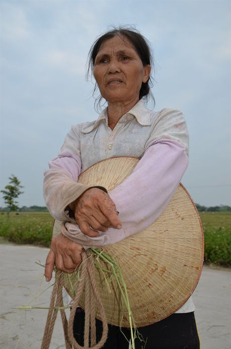 Tam ly tieu nong so mat dat la 'qua nui' chan ngang dong chay tich tu - Anh 3