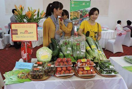 Ha Noi: Thuc day DN tham gia chuoi cung ung thuc pham sach - Anh 1