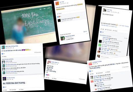 Vu 'cau' like dot truong: Dung nghi khong the dat 1.000 like - Anh 2
