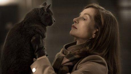 Oscar 2017: Du doan 7 bo phim gop ten trong hang muc 'Phim noi tieng nuoc ngoai hay nhat' - Anh 1