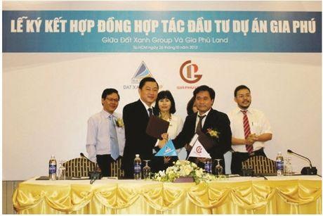 Canh bao nan kinh doanh BDS 'bat nhao' vao mua 'sot' - Anh 2