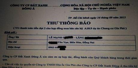 Canh bao nan kinh doanh BDS 'bat nhao' vao mua 'sot' - Anh 3