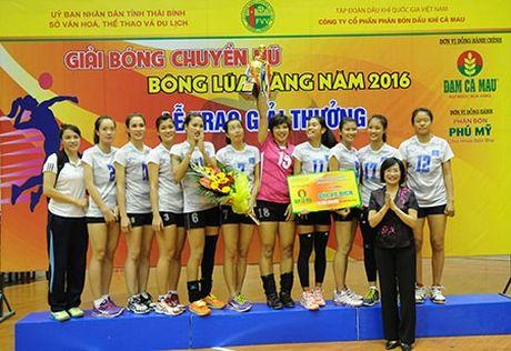PVD Thai Binh vo dich giai bong chuyen 'Bong lua vang' nam 2016 - Anh 1