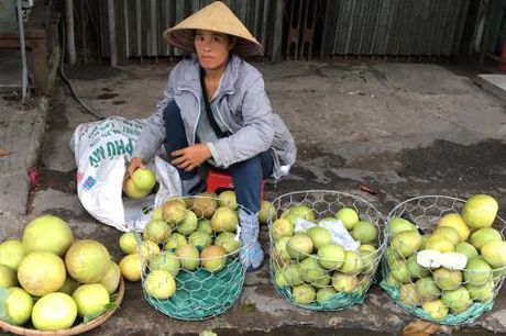 Thanh tra mat mua, nong dan Thua Thien-Hue thiet hai nang - Anh 1