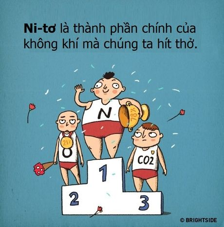 Anh vui: Khi nguyen to hoa hoc duoc 'nhan cach hoa' - Anh 8