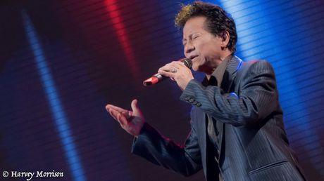 Che Linh go cua tung nha neu khong ai mua ve liveshow - Anh 1