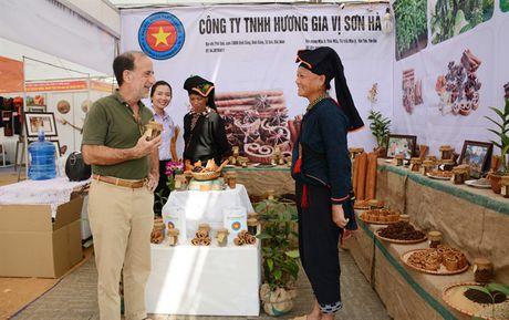 Phang phat huong vi thom lung que Van Yen - Anh 3