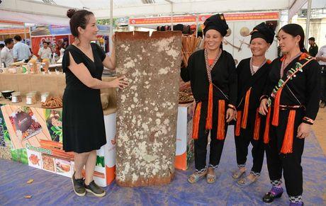 Phang phat huong vi thom lung que Van Yen - Anh 4