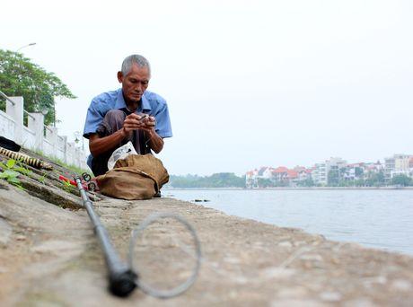Hinh anh: Ho Tay duoc lap he thong cap khi oxy cong suat lon - Anh 10