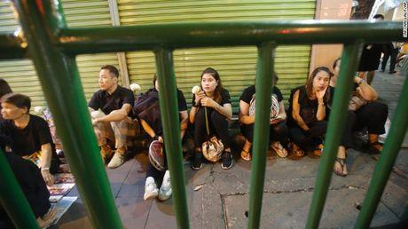 Thai Lan: Xep hang ca cay so don linh cuu Vua Bhumibol - Anh 10