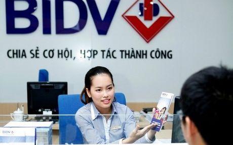 Co gi o dai hoi dong co dong bat thuong BIDV ngay 22/10 toi? - Anh 1