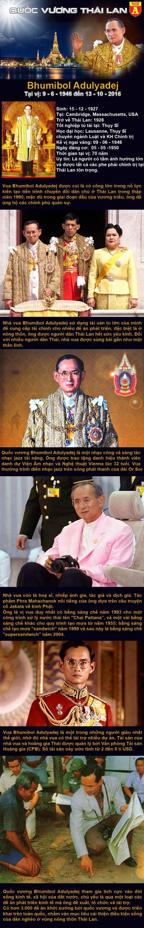 Chan dung Vi vua duoc 68 trieu nguoi Thai yeu kinh - Anh 1