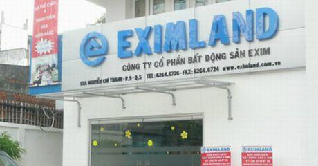 CEO Ly Van Nghia muon so huu hon 20% von Eximland - Anh 1