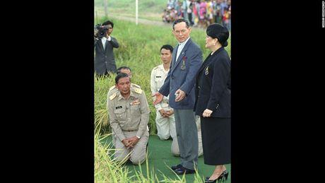 Cuoc doi Duc vua Thai Lan Bhumibol Adulyadej qua anh - Anh 10