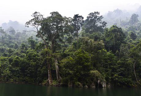 Lac vao huyen thoai giua long ho thuy dien Tuyen Quang - Anh 15