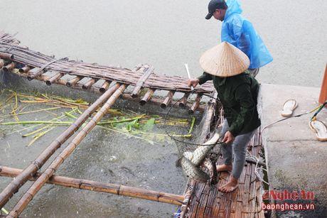 'An nen lam ra' tu nhung diem dung chan tren duong Ho Chi Minh - Anh 3
