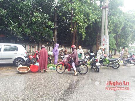 Mua lon, Thanh pho Vinh ngap sau ca met - Anh 11