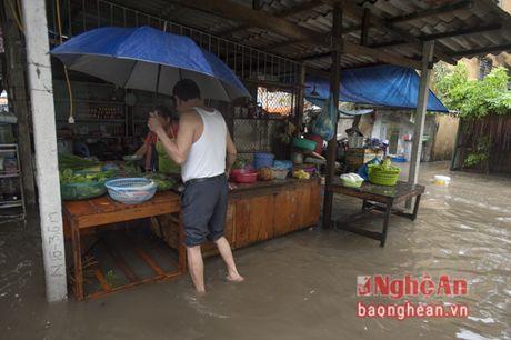 Mua lon, Thanh pho Vinh ngap sau ca met - Anh 1