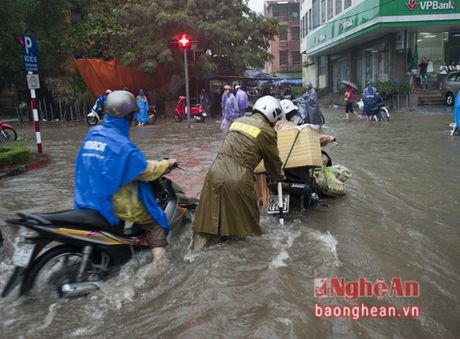 Mua lon, Thanh pho Vinh ngap sau ca met - Anh 8