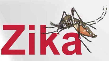 TP.HCM: Ghi nhan them 2 ca nhiem Zika - Anh 1