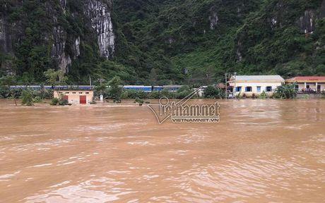 Ca tram khach nuoc ngoai mac ket tau o Quang Binh - Anh 2