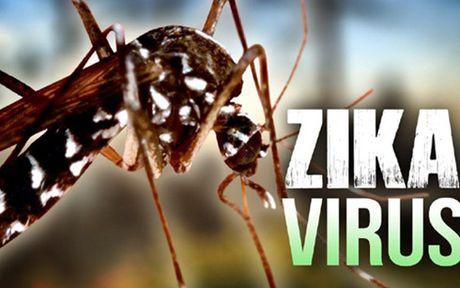 Them 2 truong hop nhiem vi rut Zika tai thanh pho Ho Chi Minh - Anh 1