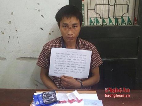 Mat phuc, bat doi tuong van chuyen 600 vien ma tuy tong hop - Anh 1