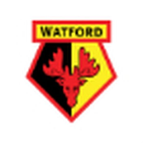 Chi tiet Middlesbrough - Watford: Bao toan thanh qua (KT) - Anh 2