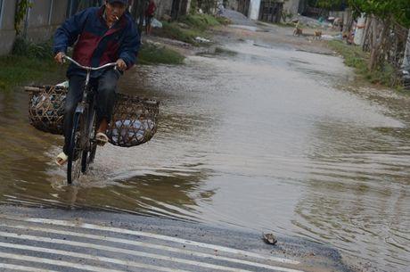 'Khuc ruot' Quang Binh quan dau vi lu du - Anh 12