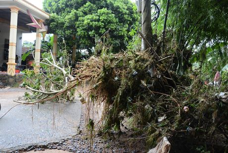 'Khuc ruot' Quang Binh quan dau vi lu du - Anh 15