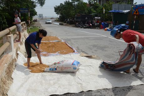 'Khuc ruot' Quang Binh quan dau vi lu du - Anh 1