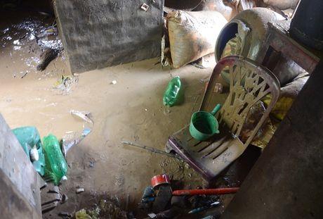 'Khuc ruot' Quang Binh quan dau vi lu du - Anh 3