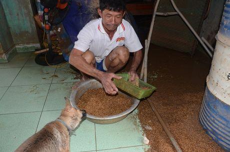 'Khuc ruot' Quang Binh quan dau vi lu du - Anh 4