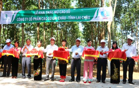 Chinh thuc khoi dong 'vang trang' dau tien o Lai Chau - Anh 1
