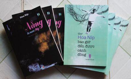 Hoa Nip da den duoc canh dong - Anh 2