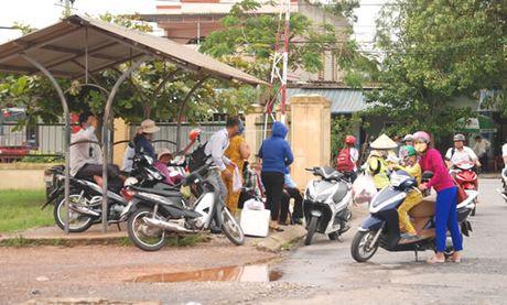 """Phan doi """"xe du, xe gio"""", hang loat xe khach tuyen Dong Ha-Hue tam ngung hoat dong - Anh 1"""