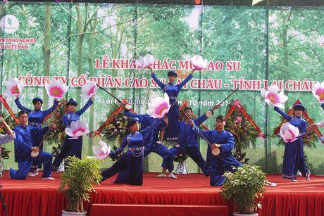 Chinh thuc khai thac 'vang trang' tai Lai Chau - Anh 4