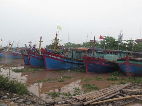 Nam Dinh, Thai Binh phong chong bao tu xa - Anh 3