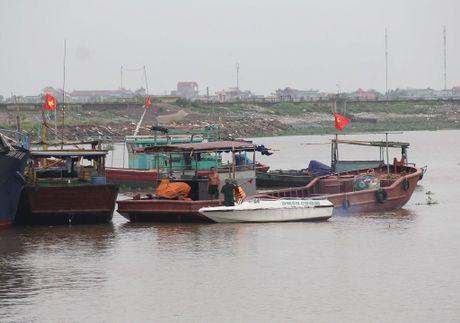 Nam Dinh, Thai Binh phong chong bao tu xa - Anh 4