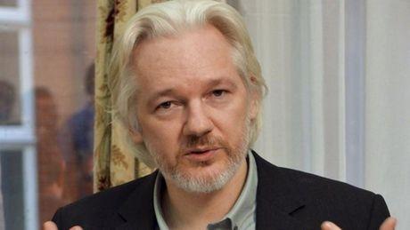 Ro tin don nha sang lap Wikileaks bi am sat chet - Anh 1