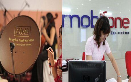 Yeu cau Chinh phu danh gia day du viec MobiFone mua 95% co phan cua AVG - Anh 1