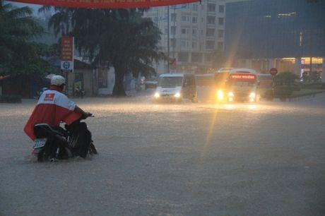 Quang Ninh, Nam Dinh khan cap chong bao so 7 Sarika - Anh 1