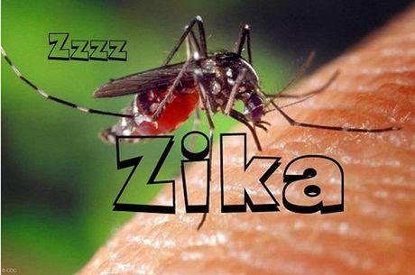 Viet Nam da co 7 ca nhiem virus Zika - Anh 1