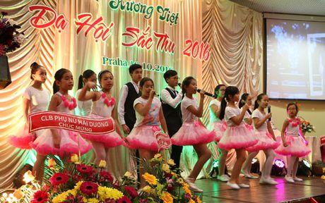 Da hoi Sac Thu ton vinh phu nu Viet Nam tai Cong hoa Sec - Anh 2