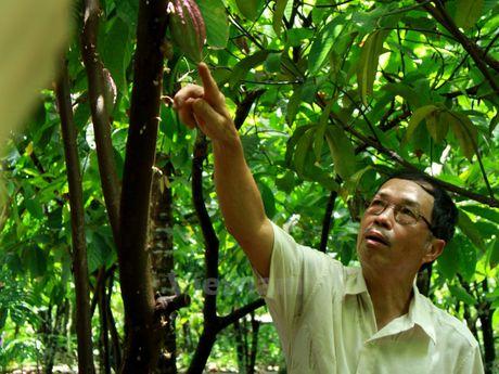 Bai 1: Gia dinh san xuat thu cong chocolate dau tien o Viet Nam - Anh 1