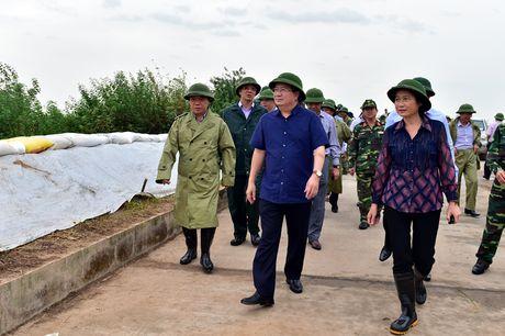 Quang Ninh huy dong hang nghin can bo, chien si giup dan chong bao - Anh 1