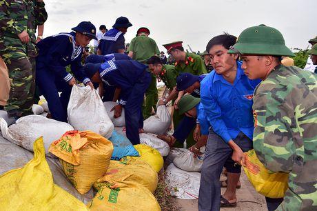 Quang Ninh huy dong hang nghin can bo, chien si giup dan chong bao - Anh 3
