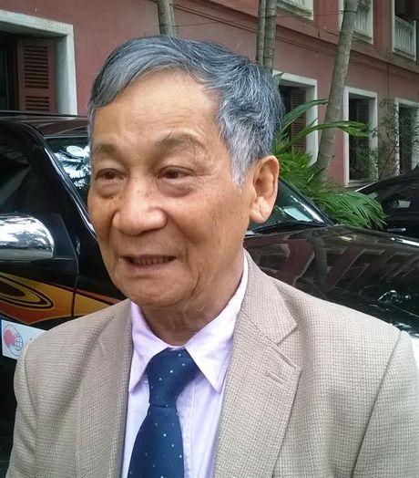 Chuyen gia: 'Can loai bo thuy dien Ho Ho' - Anh 2