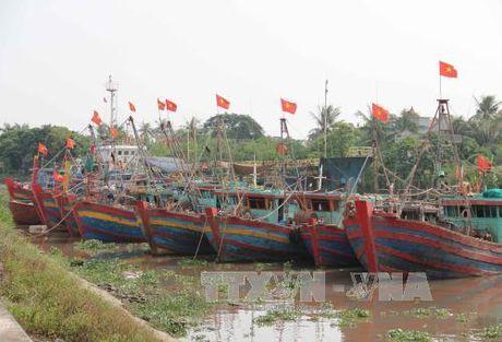 Thai Binh di dan vao trong de chinh, den noi tru bao an toan - Anh 1