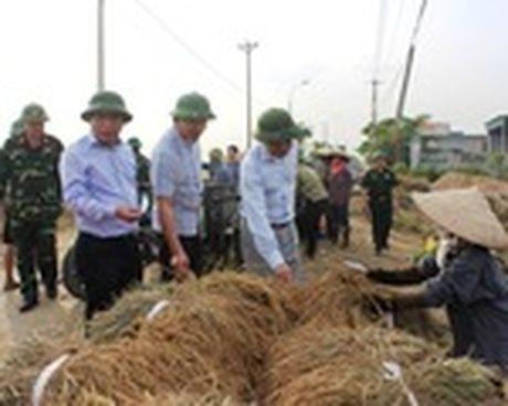 Bao so 7 cach Quang Ninh, Hai Phong 470km - Anh 1